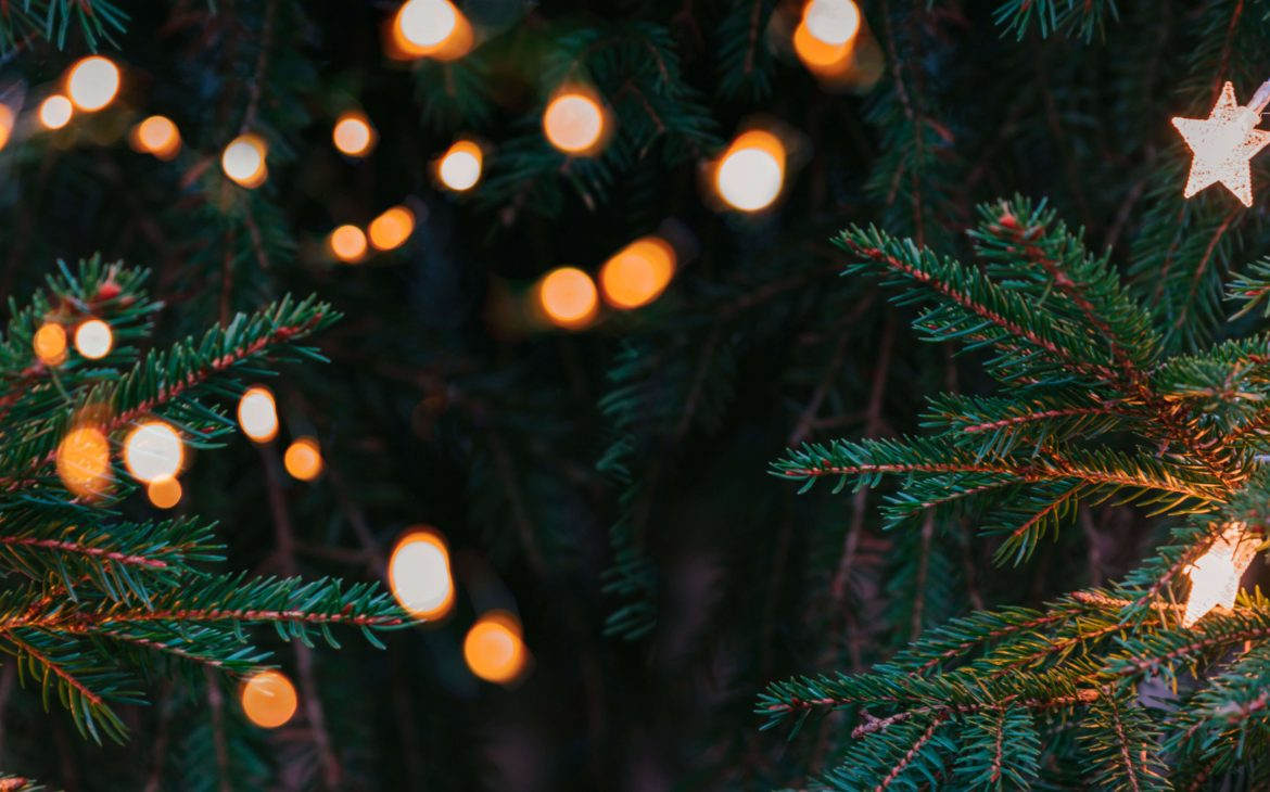 Christmas tree branches with Christmas lights and stars